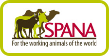 visit the SPANA website